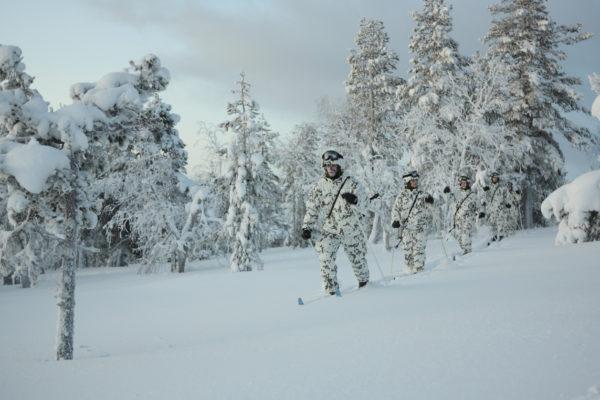 Puolustusvoimat talvi